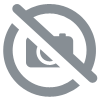 Sac cadeau kraft orange GM (lot de 5)